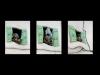 03-11-Pascale_1_Portes et fenêtres