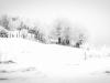 04-01-Elisabeth neige