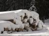 06-03-maita-neige
